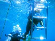 ブセナテラス前の海でボートから降りて水中練習