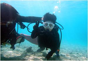 ジュニア体験ダイビング
