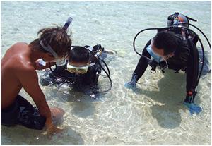 ブセナテラス前の海で、お子様と一緒にダイビング